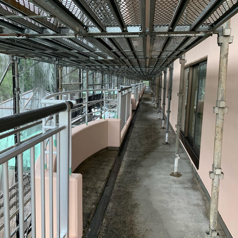 今月末より施工予定の開放廊下です。#開放廊下防水工事#通路防水工事#超速硬化ウレタン防水#オルタックスプレー#密着工法#吹付屋#防水屋#株式会社ビルドテック